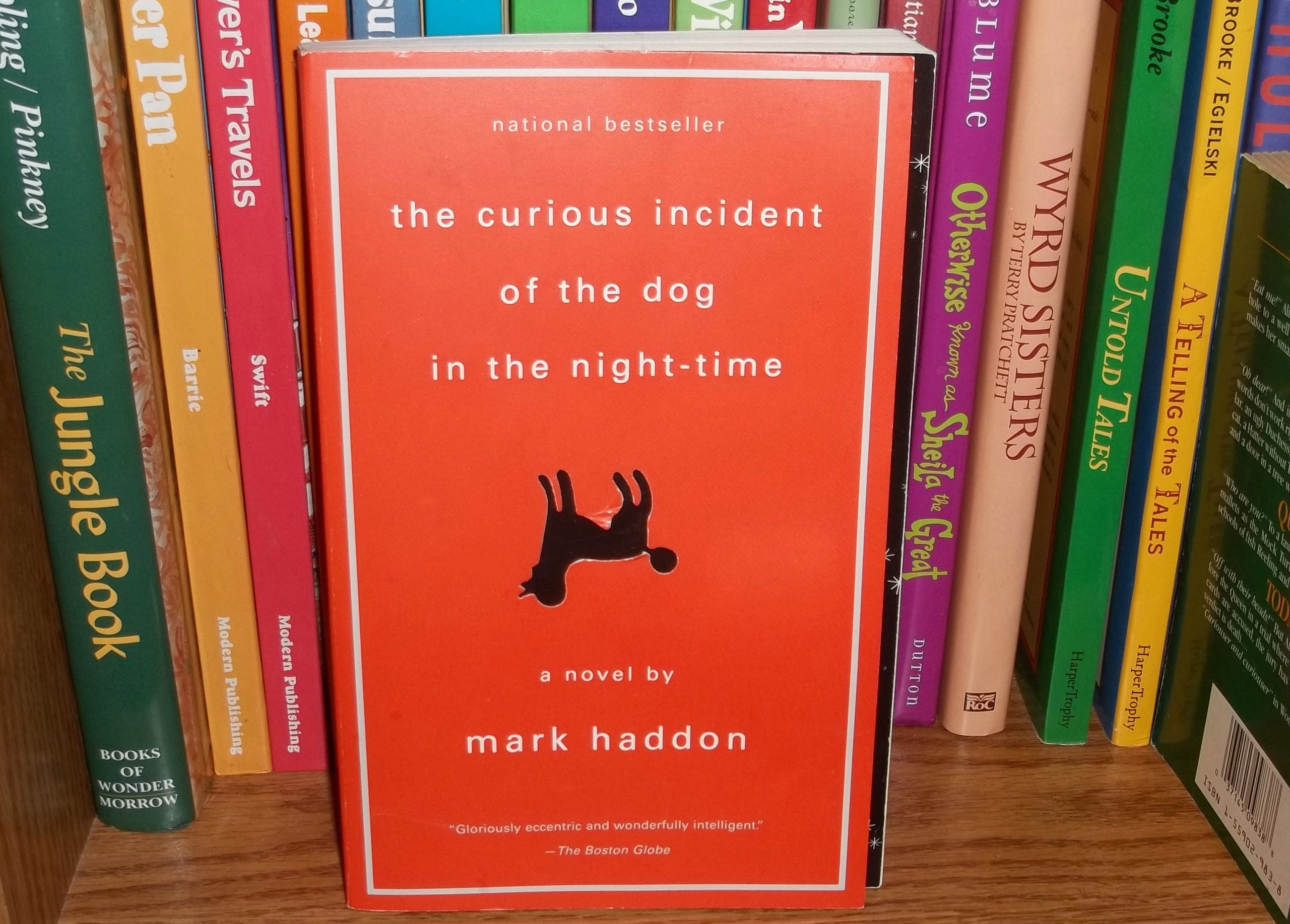 the curious incident of the dog essay Print this essay download essay get full essay the boy has not had to strive in anyway to really understand his differences before he takes on the case of the dog his self awareness and intellect are a contradiction to other autistic people.