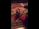 Наши собаки. То, что делает нас счастливыми. Арес/Лаки, 3 года проживший в сарае.