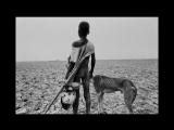 Соль земли - Вим Вендерс 2014