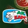 Хоккейный клуб «Ак Барс»
