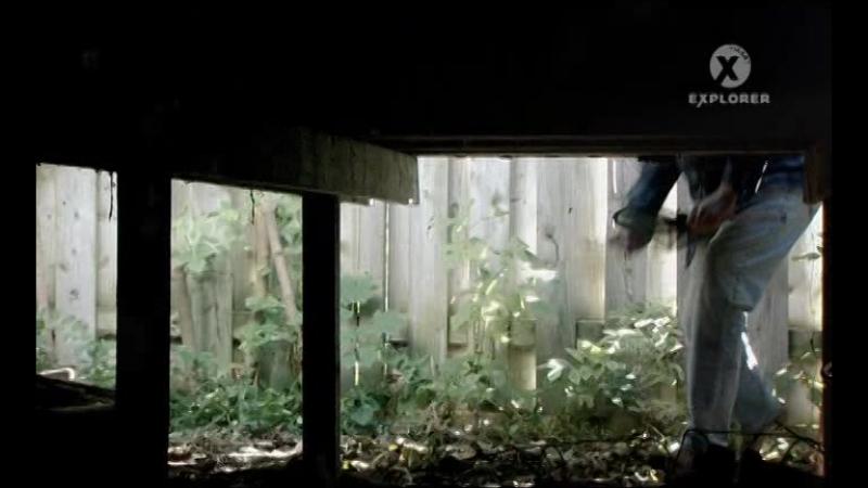 Вторжение паразитов. 2 серия из 3 (2011)