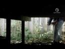 Вторжение паразитов 2 серия из 3 2011