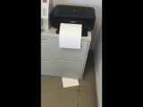 Долгое время мы не могли понять, куда пропадают наши распечатанные документы.