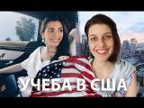 ОБРАЗОВАНИЕ В США: как поступить, учиться бесплатно, документы (feat Марина Могилко)