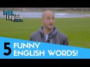 5 funny English words and their interesting meanings