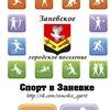 Спорт в Заневке