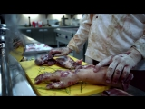 Зомби на кухне - сериал Кухня
