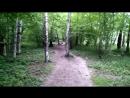 Тропинка в Гурьяновском лесу 2