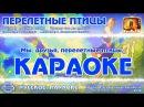 Караоке - Перелётные Птицы или Потому, что мы пилоты Русская Военная песня KaraRuTv