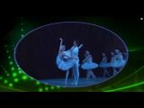 Петр Ильич Чайковский ♫♥ Лебединое озеро ♫♥ Tchaikovsky : Swan Lake