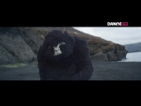 Mnek feat. Zara Larsson Never Forget You (DANGE TV)
