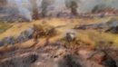 диарама курской битвы в Белгороде