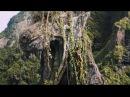 Видео к фильму «Джуманджи: Зов джунглей»