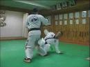 Hapkido Special Kicks