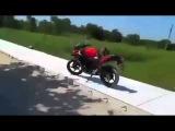 O cara que saiu na mao com um macaco por causa da moto - man fights with monkey by motorcycle