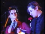 Nick Cave And The Bad Seeds Live Bizarre Festival 17.08.96