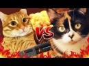 Великая Рэп Битва - Куки VS Тигра Сливки Шоу ПРОТИВ Брайн