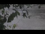 Злива  буревй в Блокуракине, 29.07.2017