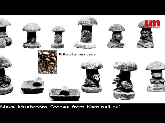 The Outstanding 1 1 Грэм Хэнкок Психоделики и Цивилизация Свет и Тьма ч 1