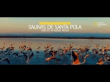 Parque natural Salinas de Santa Pola. National Geographic
