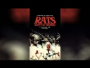 Крысы Ночь ужаса (1984)   Rats - Notte di terrore