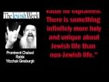 Евреи Терросты. Вся правда о евреях!!! Смотреть всем!!!