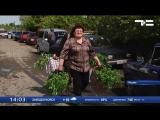 Ишимские садоводы возвращаются на свои участки