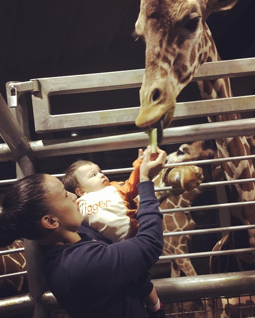 Ракель Пеннингтон: «Кормим жирафов»