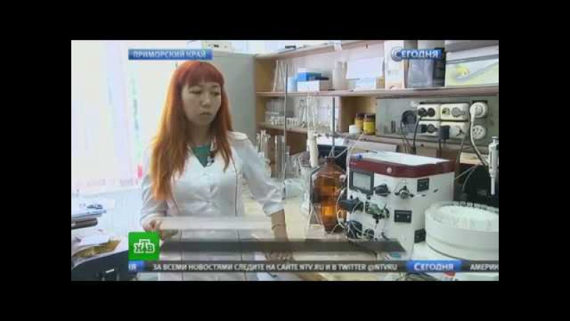 Исследование воздействия ФУКОИДАН ( FUCOIDAN) на раковые клетки. Купить концентрированный ФУКОИДАН.