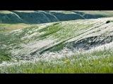 лекция «Восстановление исторического ландшафта Куликова поля»