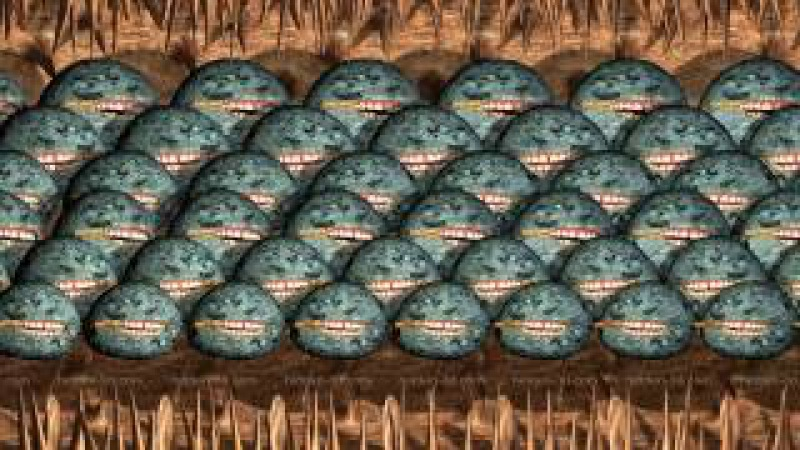 35 новых объемных стереокартинок (SIRDS) для тренировки глаз