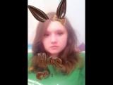 Шоколадный заяц -