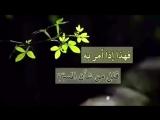 وصايا للابناء - العلامة الشيخ رسلان