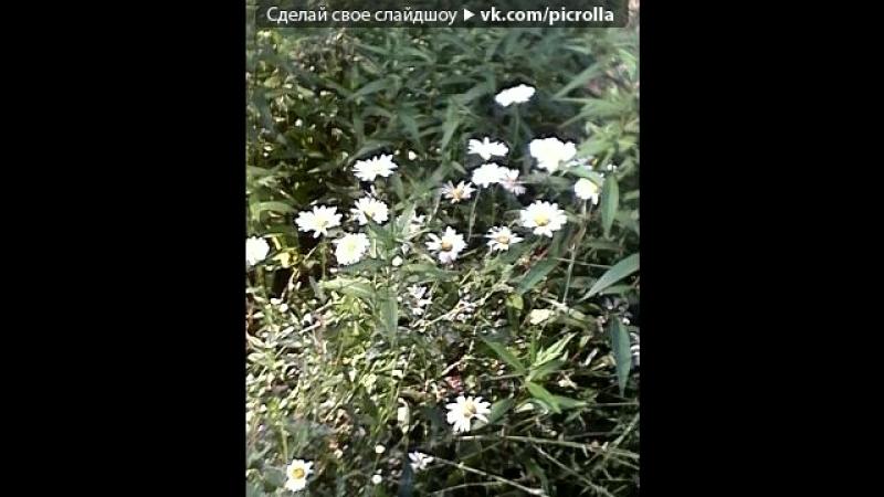 «• Открытки vk.com/fotomimi» под музыку Кипелов - Я свободен (Отражение 2013). Picrolla