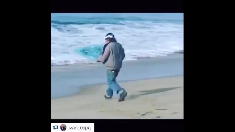 Серебряный серфер