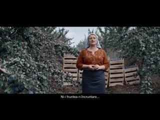 Молдавские фермеры перепели песню Queen - 480p