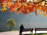 MarcaritaVilcan и Oyars Grinbergs - Листья жёлтые над городом кружатся