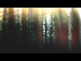 AcousticFolkNeoFolk Compilation