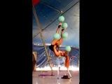 Flynn Creek Circus, Selyna Bogino