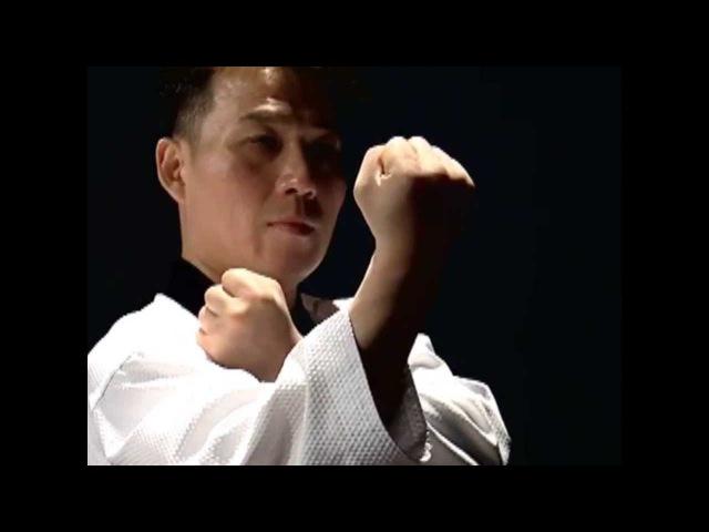 Basic Motions JIREUGI Taekwondo Technics in English HD