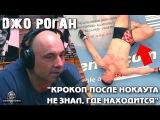 Джо Роган о том, как брал интервью у КроКопа и Оверима после нокаута