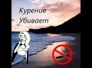 Белинда Наизусть - Курение убивает (stop motion)