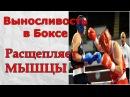 Селуянов.Упражнения на выносливость в боксе расщепляет мышцы