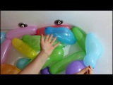 Learn Colors with Wet Balloons Finger family balloon song for kids watch