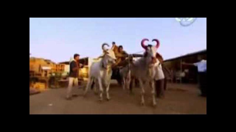 Империя Моголов в Индии-История ее расцвета и заката ...