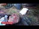 Ополченцы разгромили батальон Айдар Украина, Юго-Восток Луганская Народная Республика