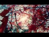 Richard Durand Pedro Del Mar feat. Roberta Harrison - Paint the Sky 720p