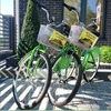 Сетевой прокат велосипедов Кафебайк Калининград