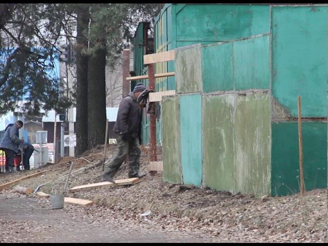 В Черкасах знов збираються нищити ліс