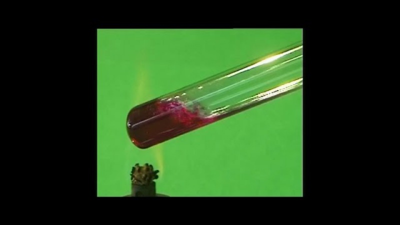Опыты по химии. Свойства водного раствора аммиака